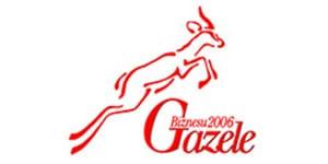 gazele_biznesu_2006